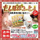 【送料無料】 タンポポコーヒー (2.5g×30p) ×3セット+