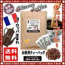 【送料無料】 チコリーストレートコーヒー (2.5g×100TB入)「ティーバッグ」 (ロースト) ハーブコーヒー 森のこかげ 健やかハウス