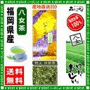 【送料無料】 特上白折茶 (茎茶)(100g) 福岡県 ≪八女茶≫ 緑茶 森のこかげ 健やかハウス