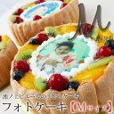フォトケーキMサイズ(約16cm)【誕生日ケーキ バースデーケーキ サプライズ】※他商品と同梱不可