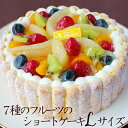 7種のフルーツのショートケーキLサイズ(約20cm)【誕生日ケーキ バースデーケーキ サ