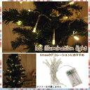 LED クリスマスオーナメント クリスマス雑貨 クリスマス ライト イルミネーション led LEDライト 小物 北欧 ナチュラル 飾り 装飾 Xmas ナチュラル【LED30球ライト】【メール便不可】【あす楽対応】