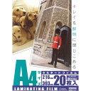 OHM ラミネートフィルム A4 サイズ 20枚入 100ミクロン LAM-FA4203【ラミネーター フィルム】00-5539 オーム電機