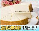 【送料無料直送】Brooklyn NY cheesecake(ニューヨーク チーズケーキ) TT-NP40【smtb-k】【ky】