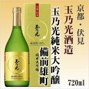 玉の光 純米大吟醸酒 備前雄町100% 720ml 【京都府・