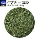 ■パクチー〈香菜〉/チップ/M缶40g [coriander/chinese parsley]【香菜/シャンツァイ/