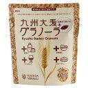 食品 - 九州大麦グラノーラさつまいも180g 単品 [キャンセル・変更・返品不可]