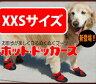 【ホットドッガーズ XXS】【楽ギフ_包装】fs04gm、【RCP】