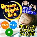 【ネコポス可】ドリームナイトブラ(バスト ブラジャー 寝なが...