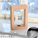 《CTS》【Fun Science】ストームグラス 気象計 天気予報 置物 サイエンス 科学 結晶 ガラス インテリア かわいい おしゃれ 化学変化 シンプル 綺麗 333-271