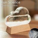 《CTS》333-274 【Fun Science】ストーム...