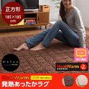 【ポイント12倍】《ND》Heat Warm発熱あったかラグ【正方形185×185cm】nd402951