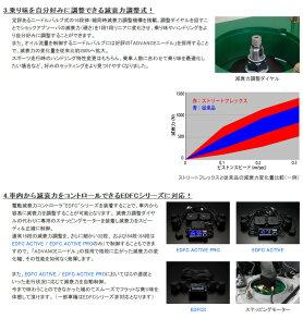 �ڼֹ�Ĵ���åȡۥƥ��ȥ�ȥե�å���������ե���ƥ���(CY4A/FF)���б�ǯ����2007.08-2009.12[TEIN][STREETFLEX][GSE20-51SS4]