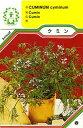 【メール便可】ハーブ・西洋野菜の種 「クミン」