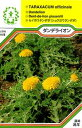 【メール便可】ハーブ・西洋野菜の種 「ダンデライオン(ダンディライオン)」