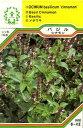 【メール便可】ハーブ・西洋野菜の種 「バジル シナモン」