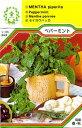【メール便可】ハーブ・西洋野菜の種 「ペパーミント」