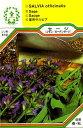 【メール便可】ハーブ・西洋野菜の種 「セージ・コモンセージ」