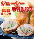 手羽先餃子 (5本入り)鮮度 味 産地 全てにこだわった焼き鳥屋の手羽先お惣菜!バーベキュー BBQ
