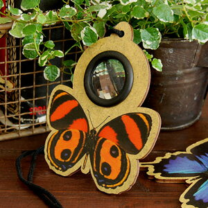 If a print full of the reality including a butterfly and the ladybug looks in the lens of an impressive pendant, is a circle; a kaleidoscope world! Because the mysterious toy of the look eye that a thing looks like dozens of is eco-friendly eco-material,