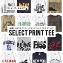 Tシャツ / ゆるっとメンズのS/Mサイズ 11種類のプリン...