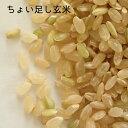 【オプション】ちょい足し玄米1kg(農家の玄米・調整済み)【...