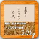 米 20kg 送料無料 玄米食 調整済 【29年産 農家の食べているおいしい玄米20kg(10kg×