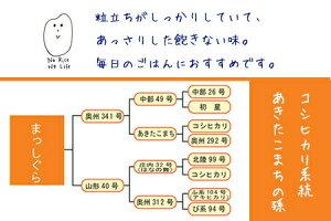 米 30kg 青森県産 2年産 まっしぐら 白米27kg (5kg×5