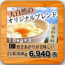 モチさぱ 噂のTKU炊き上がりがうまいお米白米30kg(10kg×3袋)
