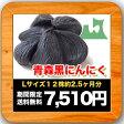 青森県産 黒にんにくLサイズ12株【2.5ヶ月分】