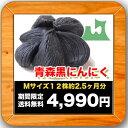 青森県産 黒にんにくMサイズ12株【2.5ヶ月分】