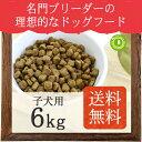 ネイティブドッグ プレミアムチキン 子犬用6kg(3kg×2) 送料無料/沖縄は送料別