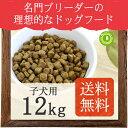 Native Dog プレミアムチキン 子犬用12kg(3kg×4)【送料無料】