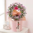 【早割!5%OFF】【母の日フラワーギフト】【送料無料】鉢植え「可憐なピンクのツルバラリース」