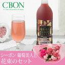 【母の日フラワーギフト】【送料無料】花束セット「シーボン 葡萄美人」