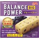 フード 食事法 バランス栄養食 バランスパワー ビッグ ブルーベリー味(ブルーベリーゼリー入り) 2袋入り