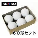 Kenko-60