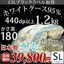 【送料無料/在庫有】 羽毛布団 シングルロング 1.2kg ホワイトマザーグース95% 440dp以上 かさ高180mm以上 60サテン 綿100% 徹底品質 CILブラックラベル 7年保証 日本製