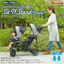 BabyTrend(ベビートレンド) シットアンド スタンド ダブル /ピスタチオ