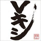 レキシ/Vキシ(通常盤)