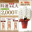 豪華特選木札【有料】 別途2,160円単品では販売できません。※有料1000円の立札より大きくなり、豪華です。