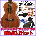 Aria ASA-18S スチール弦 パーラータイプアコースティックギター 初心者セット 【送料無料】【アコギ初心者】