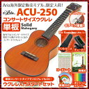 ウクレレ コンサート 単板ウクレレ入門セット ACU-250 SJB 教則本 チューナー 教則DVD