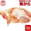 宮崎県産エビス鶏 鶏がら[2羽分]■生鮮品■ 【宮崎県産】【とり肉】【業務用】【スープ