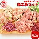 宮崎県産エビス鶏 焼き鳥セット[5本×11P]■冷凍品■【国内製造】【生串】【楽ギフ_のし