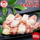ショッピング包丁 霧島鶏 もも切り身[500g]■生鮮品■【宮崎県産】【とり肉】【銘柄鶏】【メディア紹介】