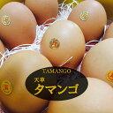 熊本天草産 オリジナル飼料で育てた鶏の卵\タマンゴ10個/甘く、コクの強さに自信があります!●マンゴー●