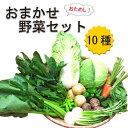 産地直送!美味しい熊本産野菜詰め合わせセット◆10種