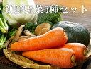 産地直送!美味しい熊本産 野菜詰め合わせ5種セット 健康 野菜 セット 野菜ジュース 詰合わせ