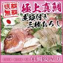 \めでたい/【送料無料】《お料理らくらく♪3枚おろし!天草牛深産の新鮮『真鯛姿造り』お食い初めにも》